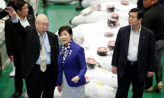 Bells, Bids, and Traffic Jam as World's Largest Fish Market Reopens in Tokyo