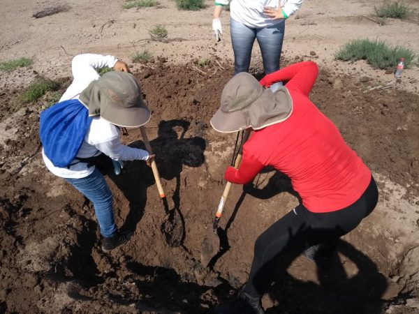 Members of the Rastreadoras por la Paz search group look for remains of missing people