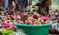Rwandan Entrepreneur Woos Drinkers With Beetroot Wine
