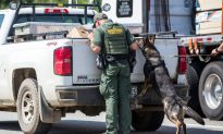 Woman Arrested After Border Agents Found 25 Guns in Gas Tank