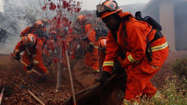 inmate firefighter crew work