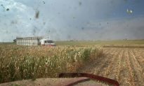 Agribusiness Giant ADM Made Buyout Approach to Argentina's Molinos – Sources