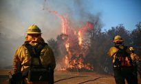 California Utility Companies Say Power Outages Occurred Right Before Wildfire Outbreak