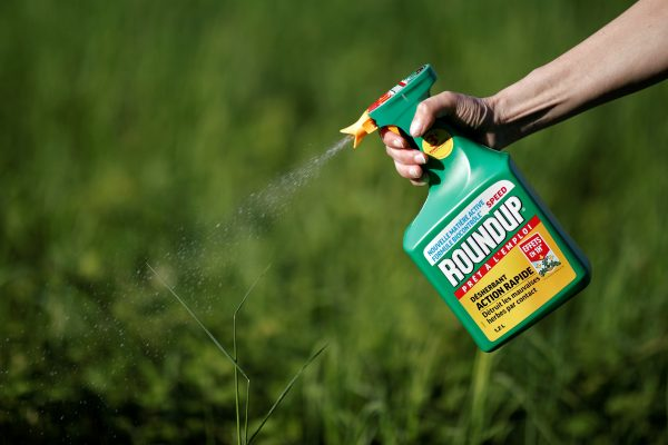 woman uses Monsantos Roundup weedkiller