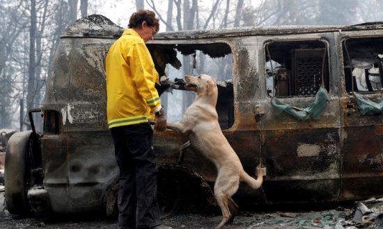 Amid Progress Against California Blaze, Number of Missing Soars