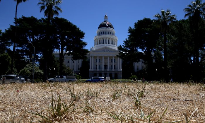 The lawn in front of the California State Capitol is seen dead on June 18, 2014 in Sacramento, California due to an ongoing drought. Thomas Del Beccaro argues that the mismanagement of the state's water resources by the Democrats is a big issue Republicans can use to appeal to voters. (Justin Sullivan/Getty Images)