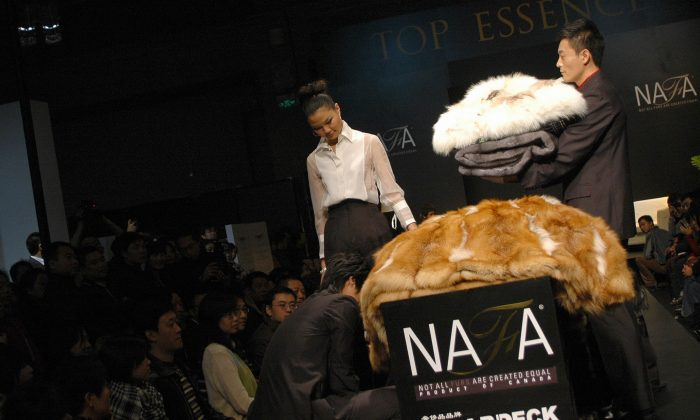 Well-to-do Chinese customers gather for a special presentation of luxurious fur accessories for home decors in Beijing on Nov. 23, 2008. (Gou Yige/AFP/Getty Images)