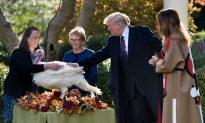 Videos of the Day: Trump Pardons Thanksgiving Turkey