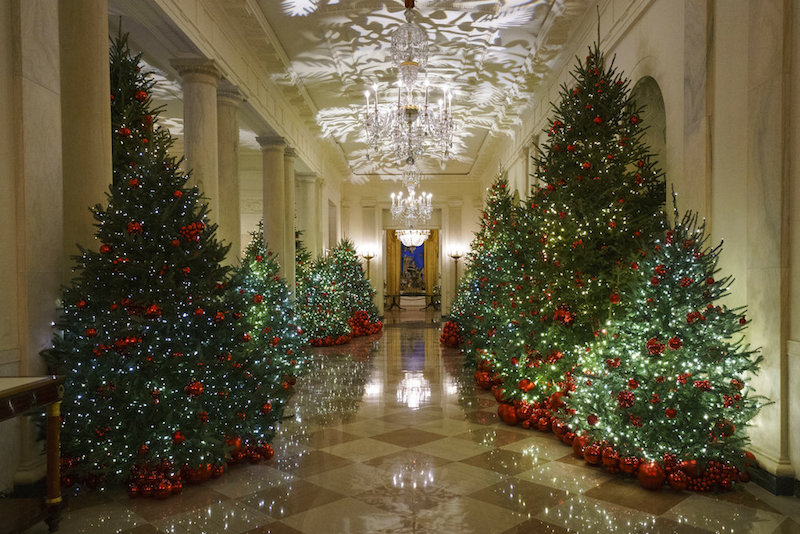 White House Cross Hall of Christmas Trees