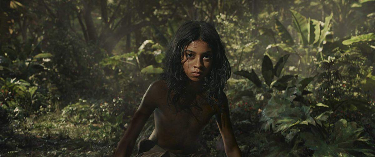 Mowgli in the woods