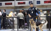 The TSA Is Using Detector Dogs More, Which Is Actually a Good Idea