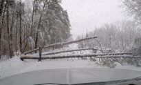 Heavy Snow Kills 3, Snarls Travel in US Southeast