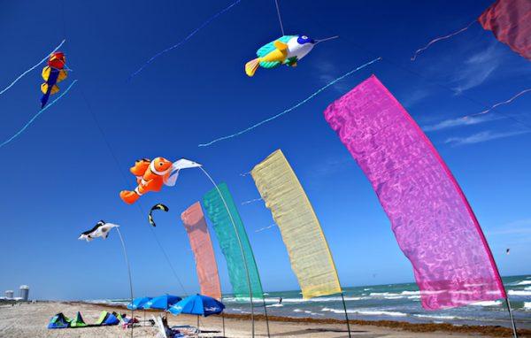 kites_ron