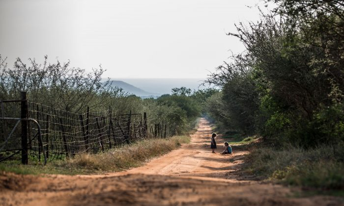 Children play near a farm in Limpopo Province, South Africa, on Oct. 31, 2017.  (Gulshan Khan/AFP/Getty Images)