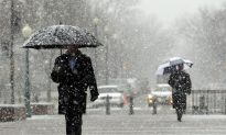 Polar Vortex Could Mean Brutal Cold Snap in Parts of the US