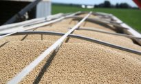 China Buys Second Round of Soy Since Trade War Truce, USDA Confirms