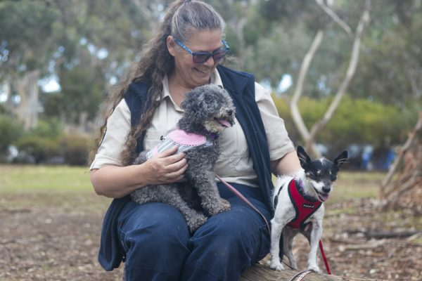 Two sweet, blind dogs find comfort with each other after