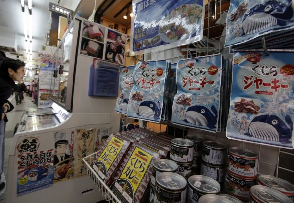 Japan announces IWC withdrawal to resume commercial whaling