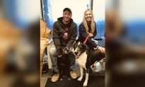 2 Dogs That Escaped Man's Euthanasia Request Find New Home