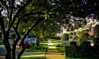 Leafy Green Neighborhoods Tied to Better Heart Health