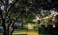 Leafy Green Neighborhoods Tied to Better Heart Health