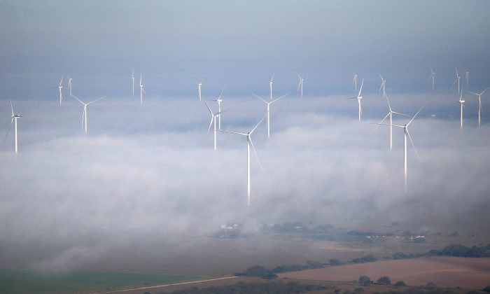 A fog lifts as windmills turn near La Grulla, Texas.(Photo by John Moore/Getty Images)