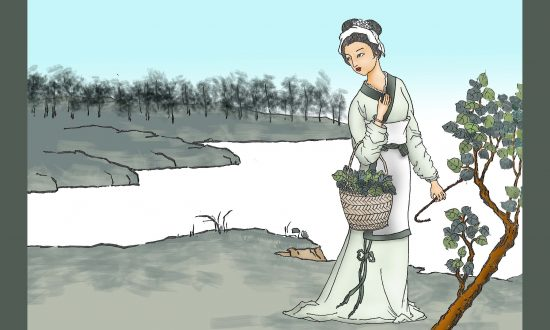 A girl picking leaves from a mulberry tree. (Illustration by Sun Mingguo/The Epoch Times)