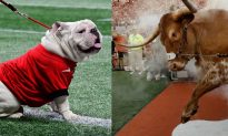 Texas Longhorns Mascot Charges Georgia's Bulldog Causing Chaos