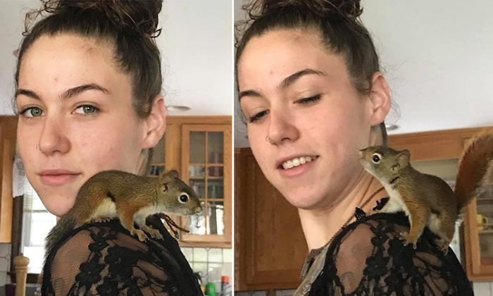 Sheila Mattie, of Wareham, Massachusetts, plays with the squirrel she nursed back to health and returned to the wild when he dropped by her house for a visit. (Facebook   Sheila Mattie)