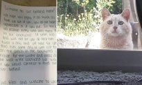 Family Moves Into New Home and Finds Unexpected Note From Old Homeowner to Care for Cat