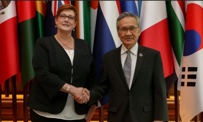 Australia's Foreign Minister Marise Payne shakes hand with her Thai counterpart Don Pramudwinai at the Ministry of Foreign Affairs in Bangkok, Thailand, January 10, 2019. (Athit Perawongmetha/Reuters)