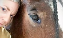 With One Look, Rescued Horse Stops Woman From Committing Suicide