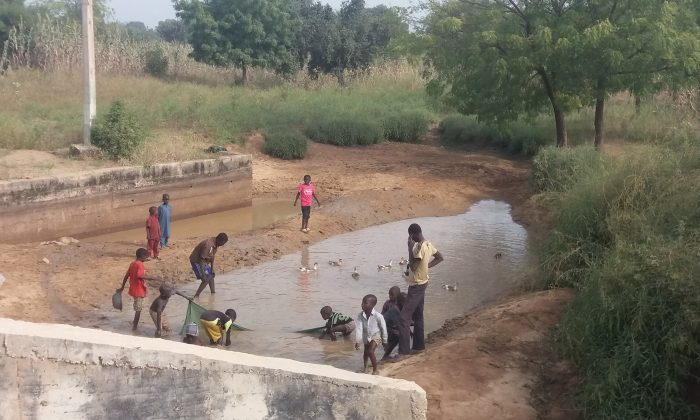 Children playing in a pond in Warawa Local Government Area of Kano State, Nigeria, on Nov. 11, 2016. (Toluwani Eniola/Special to The Epoch Times)