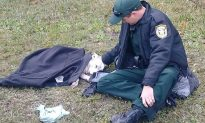 Photo of Cop Comforting Dog At Scene of Car Accident Goes Viral on Internet