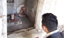 Severely Injured Dog 'Waiting' in Temple for Help Gets Rescued in Time