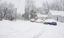 Snowstorm Churns Towards Washington, at Least Five Dead in US Midwest