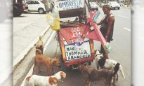 Poor Man in Manila Sells 'Junk' To Buy Food For Himself And Pet Dogs