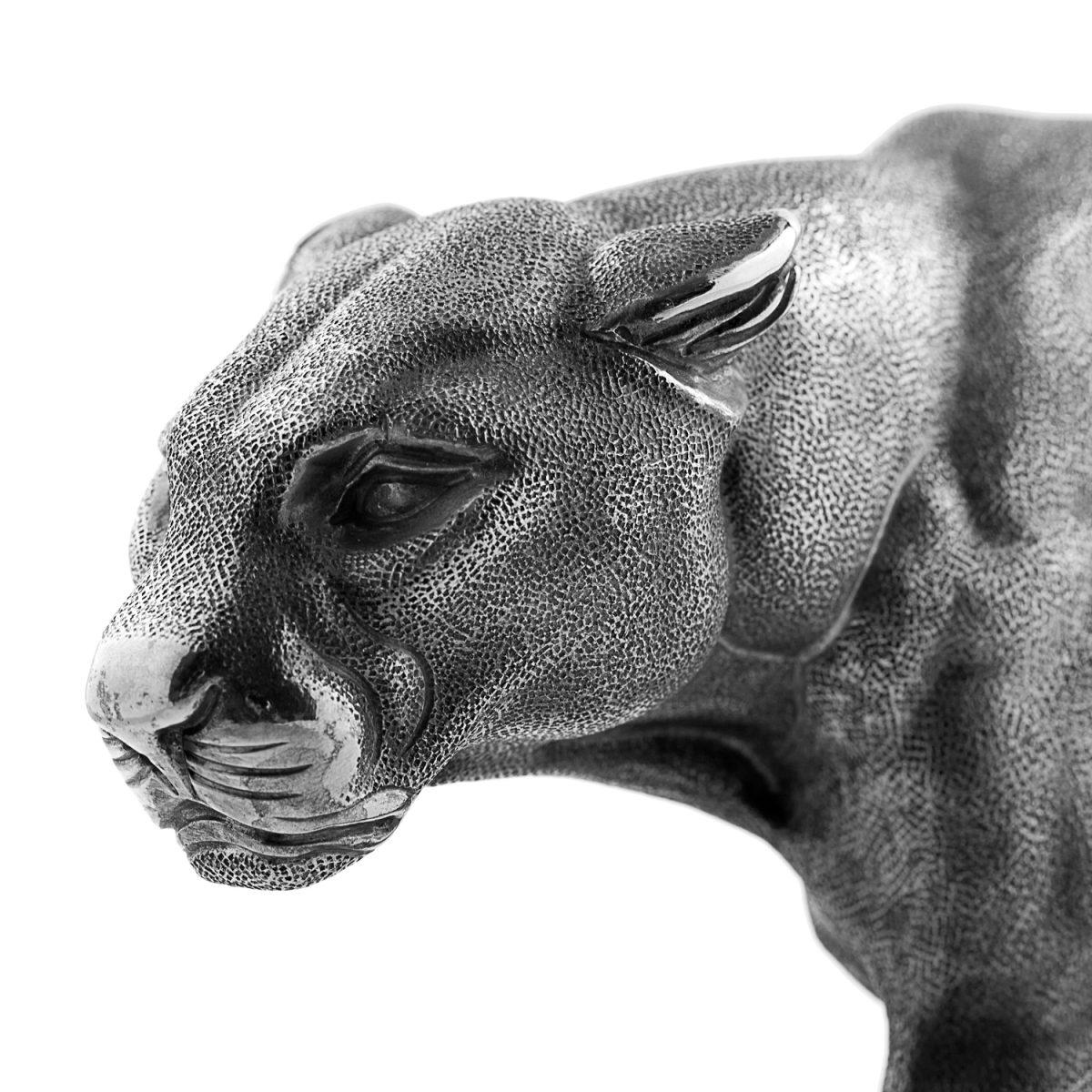 Panther head big cat