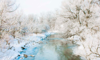 A Berkshire Journal: The Many Sounds of Winter