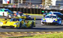 Get Ready for the 2019 IMSA Rolex 24 at Daytona