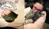 Woman Adopts Elderly Dog from Shelter and Finds Out It's Actually Her Lost Childhood Puppy