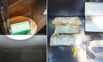 Couple Stumble on 1950s Suitcase Full of Cash Hidden in a Wall While Renovating Basement