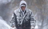 US Postal Service Suspends Service in Metro Detroit, Michigan Over Cold