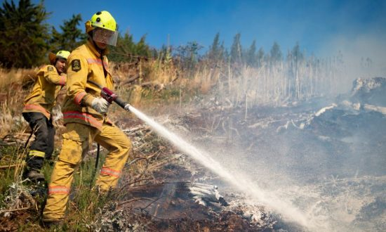 New Zealand Defence Force firefighters combat the Richmond fire near Nelson, South Island, New Zealand, Feb. 8, 2019. (Chad Sharman/New Zealand Defence Force/Handout via Reuters)