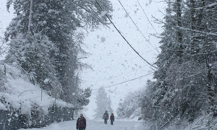 People walk up a closed off road as snow continued to fall in Olympia, Wash., on Monday, Feb. 11, 2019. (AP Photo/Rachel La Corte)