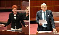 Hanson Savages Senator Over Physical Clash