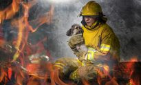 Firefighters and Civilians Form Human Chain to Rescue 86 Dogs from a Fire at Pet Store