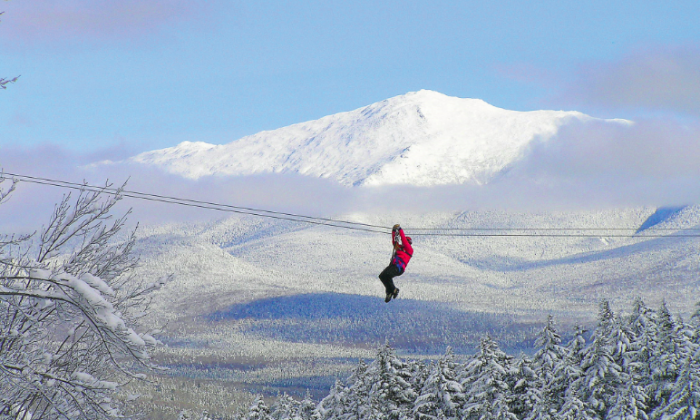 The Bretton Woods Canopy Tour offers a bird's eye view of scenic Rosebrook Canyon. (Courtesy of Omni Mount Washington Hotel)