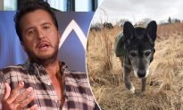 Luke Bryan's Senior Rescue Pup, Poochie, Passes Away 9 Days After They Take Him Home