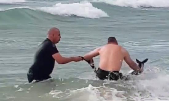 Police Rescue Drowning Kangaroo